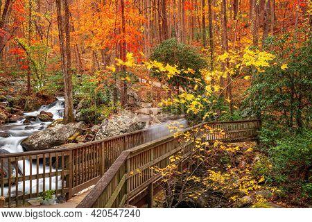 Bridge to Anna Ruby Falls, Georgia, USA in autumn.