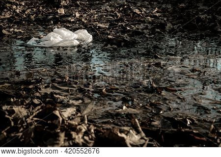 Ecology Background. Plastic Waste Rubbish In Forest, Woodland. Garbage Trash In Environment. Empty U