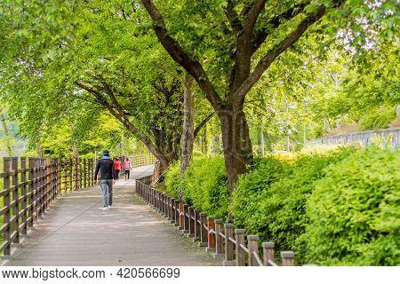 Unidentified People Walking On Boardwalk In Local Urban Park.