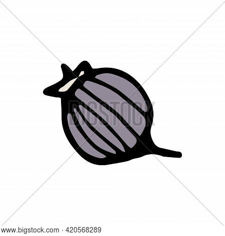 Hand Drawn Colorful Gooseberry Berry Isolated On A White Background. Doodle, Simple Outline Illustra