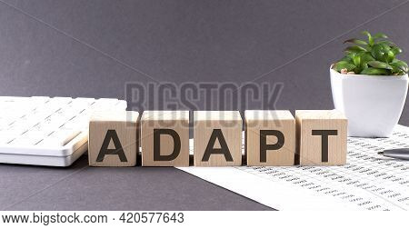 Concept Word Adapt On The Wooden Blocks On Gray Background From Green Flower And Chart.