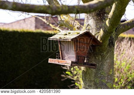A Wooden Bird Feeder House Hanging From A Branch Against The Trunk Of A Tree In A Garden. It Has A P