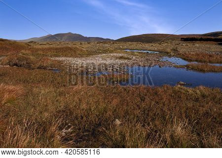 There Are A Lot Of Small Ponds On Always Wet Bogs On The Comeragh Plateau In County Waterford, Irela