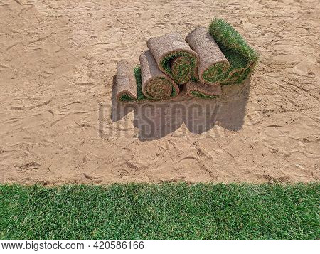 Turf Grass Rolls Or Sod Laying On A Sand Base, Closeup