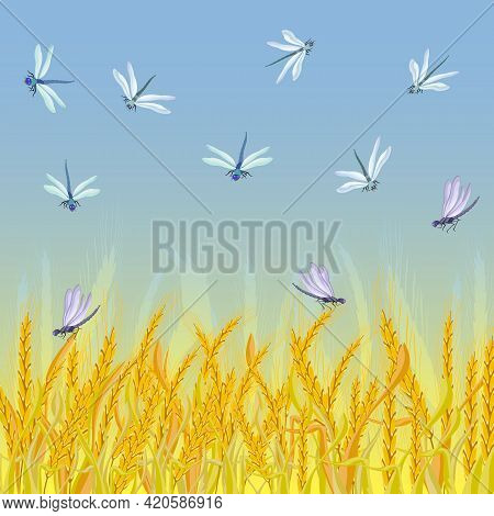 Illustration With Ears And Dragonflies.yellow Ears And Dragonflies On A Colored Background In Vector