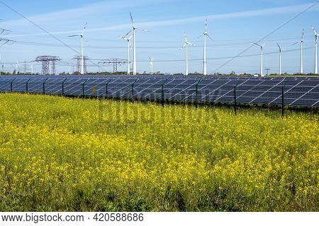 Flowering Canola Field With Alternative Energy Production Seen In Germany