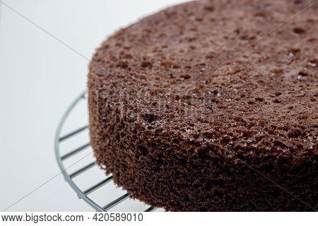 Chocolate Cake Base. Porous Cake Base. Homemade Baking.