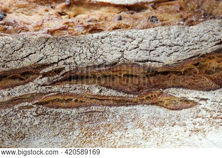 Wheat Bread Baguette With Buckwheat Flour And Seeds With A Crispy Crust Close-up Macro Photography
