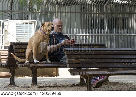 Tel Aviv, Israel - April 16th, 2021: A Man And His Dog On A Bench In A Tel Aviv Street.