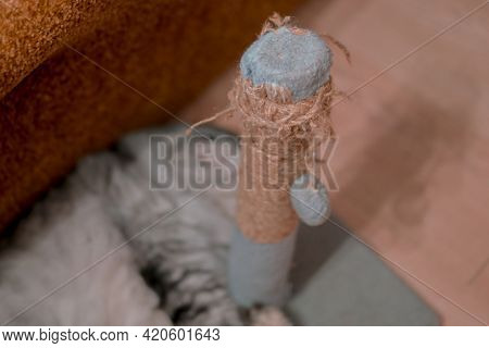 Scratched Thread On A Scratcher Pole For Cat With Blurred Cat On The Background. Floss. Pet. Game. H