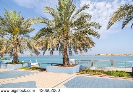 Abu Dhabi Corniche In The Morning. Public Walkway With Palm Trees And Sea At The Background.