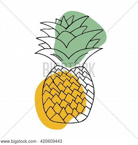 Hand Drawn Pineapple Icon. Hand-drawn Fruits. Pineapple Vector Illustration. Pineapple Doodle. For B