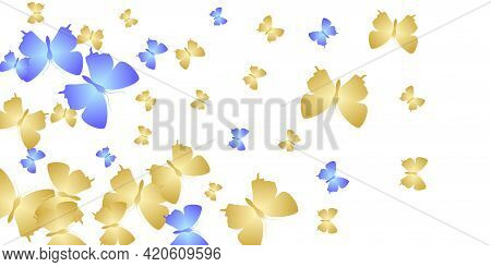 Exotic Bright Butterflies Flying Vector Wallpaper. Spring Beautiful Insects. Detailed Butterflies Fl