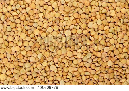Green Lentils, Background, From Above. Whole Raw Lens-shaped Seeds Of Lens Culinaris. In Cuisines Of