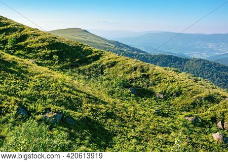 Mountain Landscape In Summer. Grassy Hills In The Morning Light. Beautiful Nature Of Carpathians