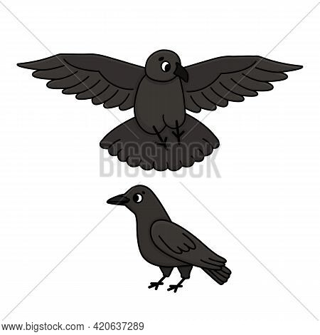 Black Or Dark Gray Crows. Cartoon Vector Flying And Standing Ravens Illustration. Cut Out Set Of Two