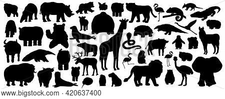 Set Of Silhouette Cartoon Isolated Savannah African American Forest Animals. Vector Tiger Lion Rhino