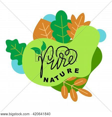 Vector Illustration Of Pure Nature Green Sign With Tree Leaves And Handwritten Lettering Logo Ecolog