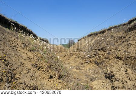 Soil Erosion. A Deep Clay Ravine Formed By Erosion By A Water Stream.