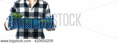 A Woman In A Shirt In A Cage Holds A Box With Microgreens In Her Hands On A White Background With Sp