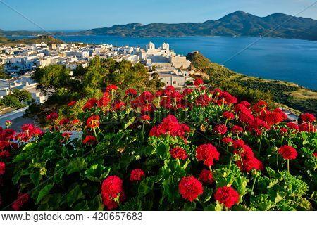Red geranium flowers with Greek village Plaka in background on Milos island in Greece