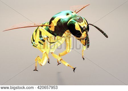 Artistic 3d Illustration Rendering Of A Wasp