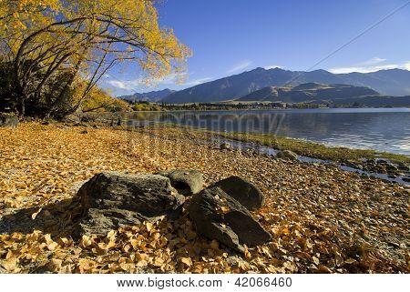 Lake Wanaka, Glendhu Bay, New Zealand