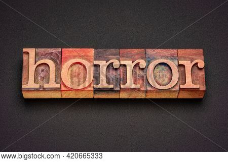 horror word abstract in vintage letterpress wood type against black background