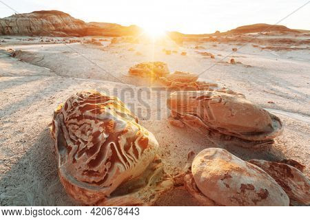 Unusual desert landscapes in Bisti badlands, De-na-zin wilderness area, New Mexico, USA