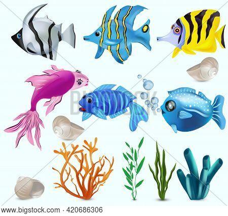 Underwater World, Tropical Fish. Addis Butterfish, French Angelfish, Reef Fish, Starfish, Seaweed, C