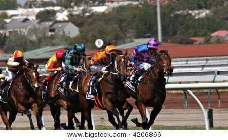 6 De noviembre - carrera de caballos en día Robles en Flemington Melbourne