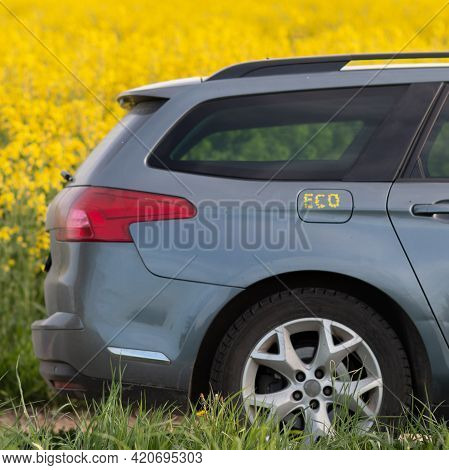 Machine On The Background Of A Rapeseed Field. Eco Inscription Made Of Rapeseed Petals On The Car's