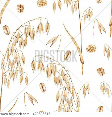 Seamless Pattern With A Branch Of Ripe Barley And Oat Flakes On A White Background. Harvest Of Cerea