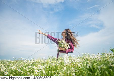 Happy Woman Gather Flowers In Summer Chamomile Field, Carefree