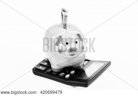 Financial Wellbeing. Piggy Bank Pink Pig Stuffed Dollar Banknote And Calculator. Money Savings. Econ