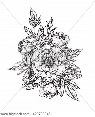Beautiful Vector Composition Of Black And White Peony Flowers, , Isolated On White Background