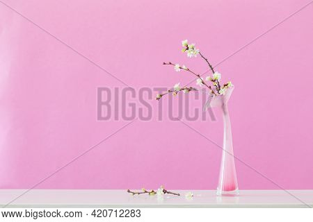 Cherry Flowers In Glass Pink Vase On Pink Background