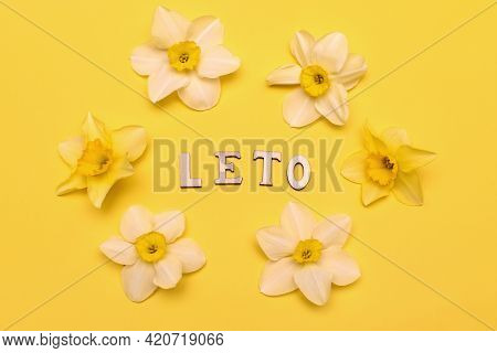 Leto Lettering In English Letters On A Yellow Background. The Russian Word Summer, Written In Englis