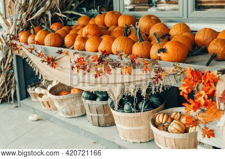 Thanksgiving And Halloween Holiday Preparations. Colorful Pumpkins In Baskets By Store On Farm. Autu
