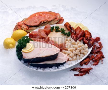 Platter Of Raw Seafood Ingredients On Ice
