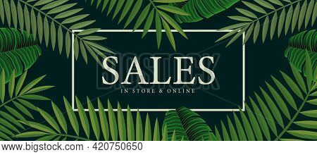 Summer Sale Background With Palm. Vector Background For Banner, Poster, Flyer, Card, Postcard, Cover