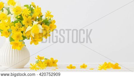 Still Life With Yellow Spring Flowers In Jug On White Background