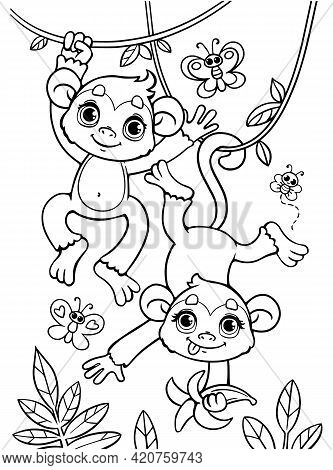 Coloring Book Of Little Baby Monkeys Are Jumping On A Branch. Black And White Outline. Zoo. Animals