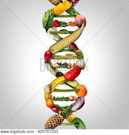 Gmo Food And Genetically Modified Crops Or Engineered Agriculture Concept Using Biotechnology And Ge