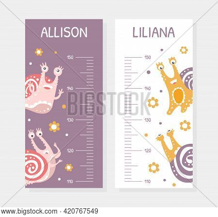 Height Chart With Cute Snail Character As Gastropod With Coiled Shell Vector Template