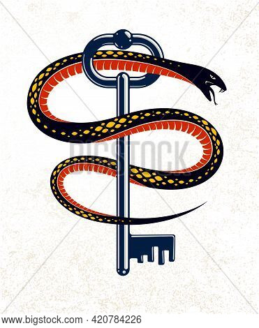 Snake Wraps Around Vintage Key, Protected Secret Concept, Turnkey And Serpent Old Style Tattoo, Vect