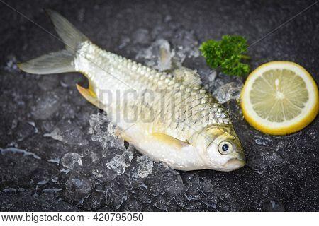 Fresh Fish Lemon Top View, Silver Barb Fish On Ice,  Java Barb Carp Fish On Market Food On Dark Back