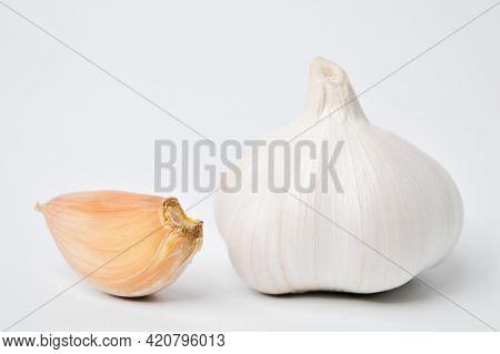 Fresh Garlic Isolated On A White Background. Garlic Is A Species In The Onion Genus, Allium.