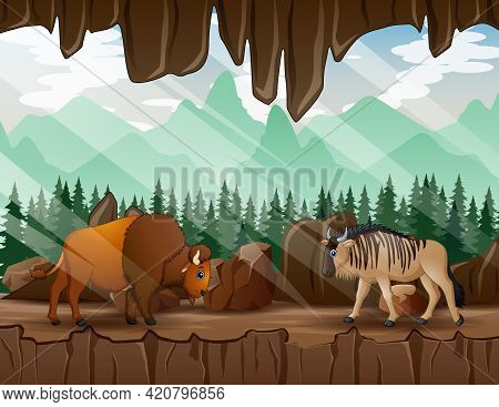 Cartoon A Wildebeest And Bison Walking In The Cave