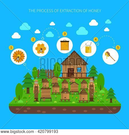 Process Of Honey Extraction Concept With Several Steps On Blue Background Flat Vector Illustration